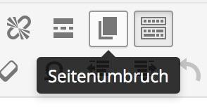 WordPress Page Break Button